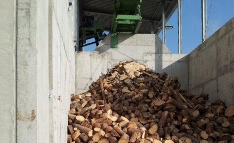 Impianto per taglio a misura di tronchetti per cartiera for Grandi capanne di tronchi